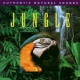 V  /  A CD Relax With Nature -jungle