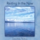 Noll, Shaina CD Resting In The Now